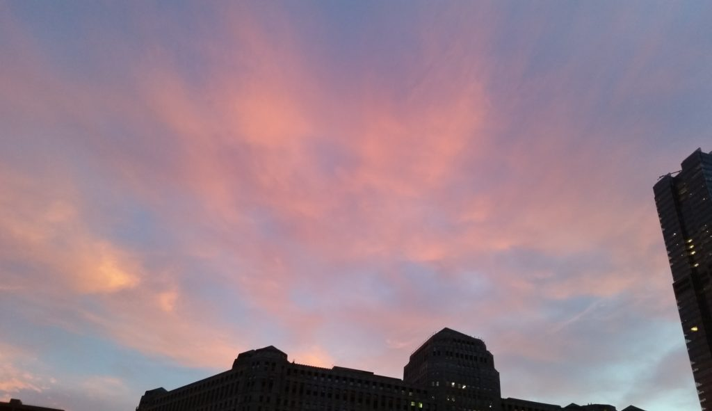 Downtown bird monitors are often treated to beautiful morning skies as they start their rounds. – 8/15/2016, © Stephen Constantelos