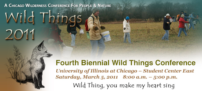 WildthingsConfWordPressBanner2011