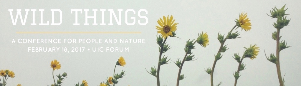 wild-things-header-2-1