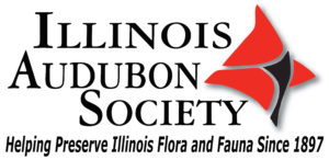 Illinois Audubon